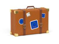 EU suitcase